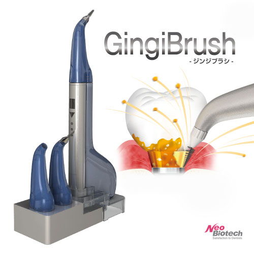 Gingi Brush